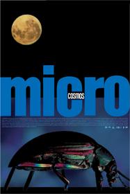 Microcosmos (1996)